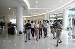 杭州市委常委佟桂莉莅临华星正淘跨境电商园